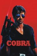CobraPoster