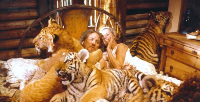 En typisk myskväll hos Tippi Hedren och maken Noel Marshall.
